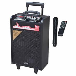 专业户外移动音箱TY-266型(2550)
